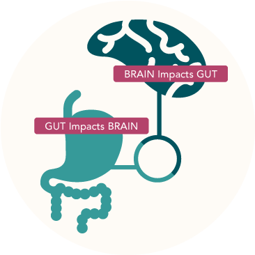 Connection between the brain and the gut